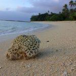 'Eua Beach Resort - Tonga