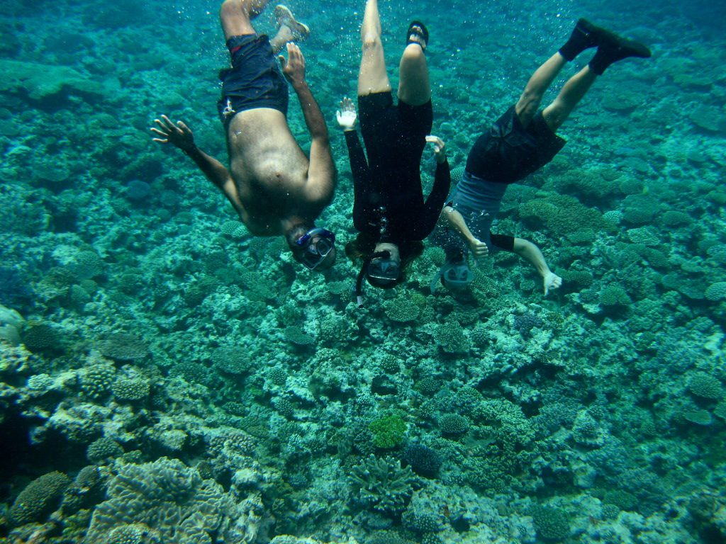 Snorkeling Tour (Outer Reef)