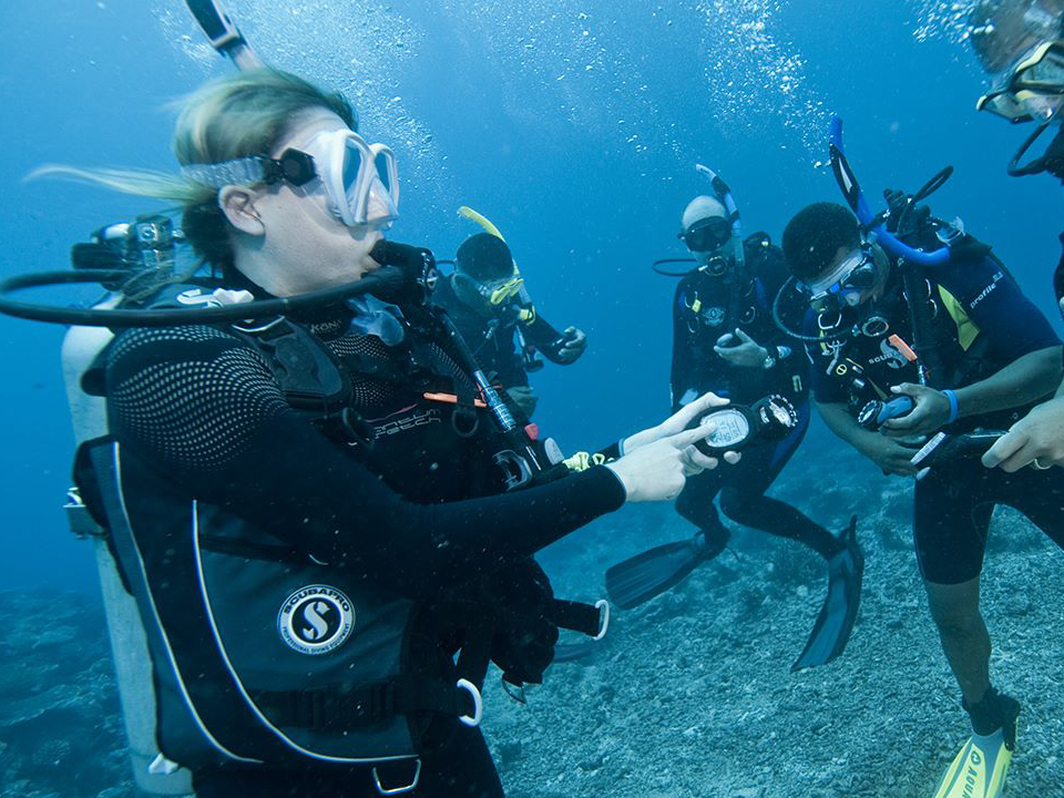 Scuba Diving Tour (2Dive - Outer Reefs)