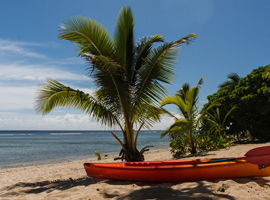 Tonga Beach Resorts